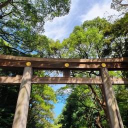 Exploring Japan – Part I