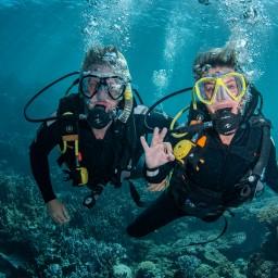 Diving Ningaloo